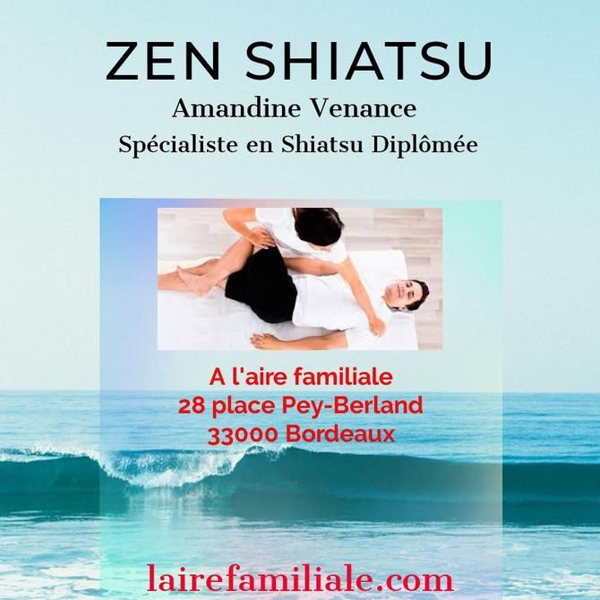 Une Séance pour vous, en fonction de vos besoins. Essayez la thérapie japonaise du Zen shiatsu.