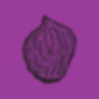 pit_purple.png