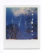 Melissa Efrus_Untitled 5_Polaroid.jpg
