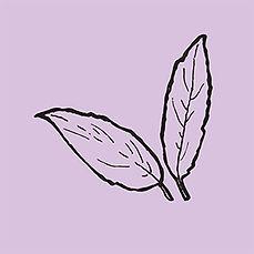 leaves_lilac.jpg