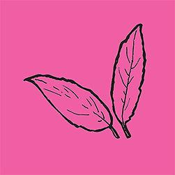leaves_magenta.jpg