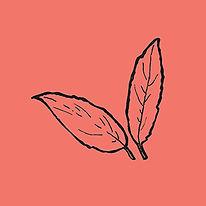leaves_orange.jpg