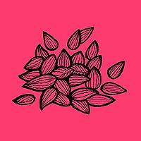 Copy of seeds_pink.jpg