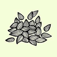 Copy of seeds_green.jpg