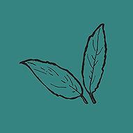 leaves_aqua.jpg