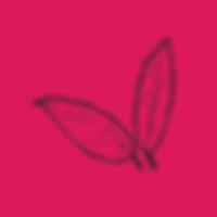 leaves_pink.png