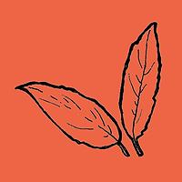 orange_leaves.png