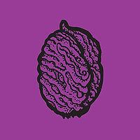 pit2_purple.jpg