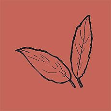 leaves_red.jpg