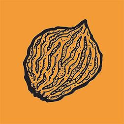 pit2_orange.jpg