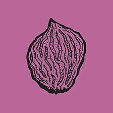 pit1_purple.jpg