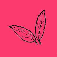 leaves_pink.jpg