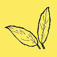 yellow_leaves.png