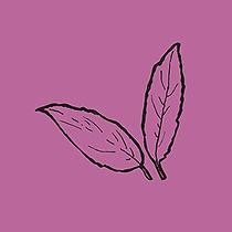 leaves_purple.jpg