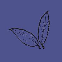 leaves_blue.jpg