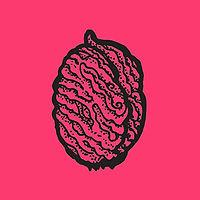 pit2_pink.jpg