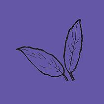 leaves_darkpurp.jpg