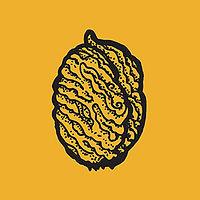 pit2_mustard.jpg
