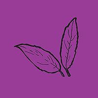 leaves_purp.jpg