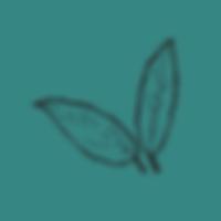 leaves_aqua.png