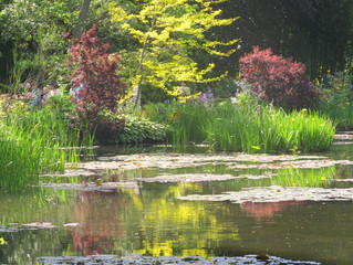 Giverny- Jardin de C. Monet 15.05. 2014