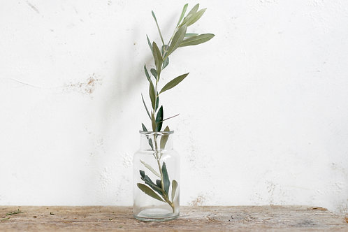 Clear wide mouth glass botanical jars | Apothecary vase