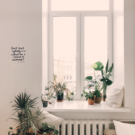 Clean Living at Home