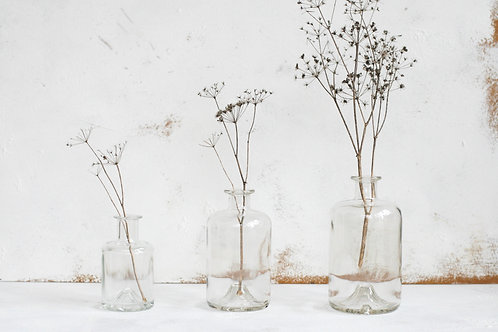 Clear glass botanical jars