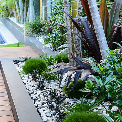 Rock mulch helps to protect against water loss.