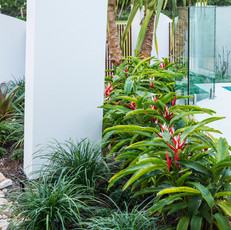 A resort-inspired mix of plantings.