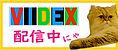 配信バナー_VIDEX.jpg