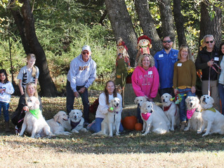 3rd Annual Alabaster Goldens Reunion