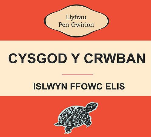 Dyluniad Cysgod y Crwban