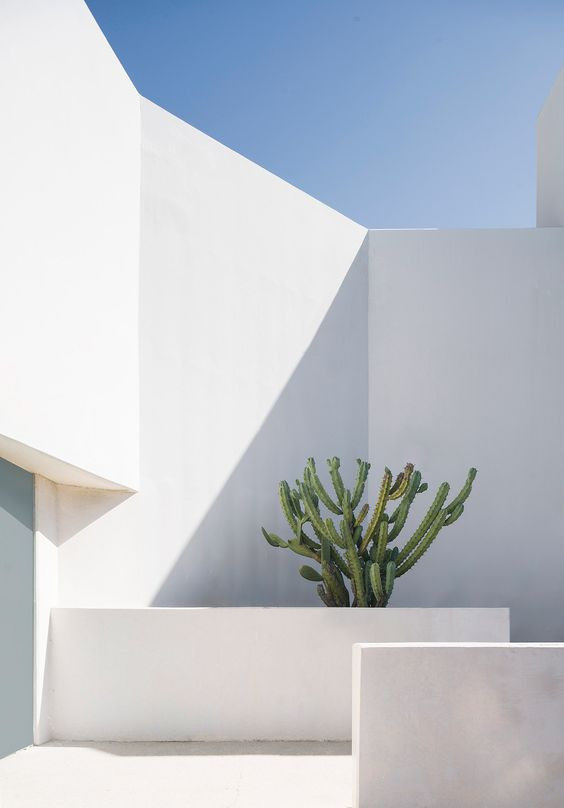 Why is it important to know the basics of photography in order to make a great architectural visuali