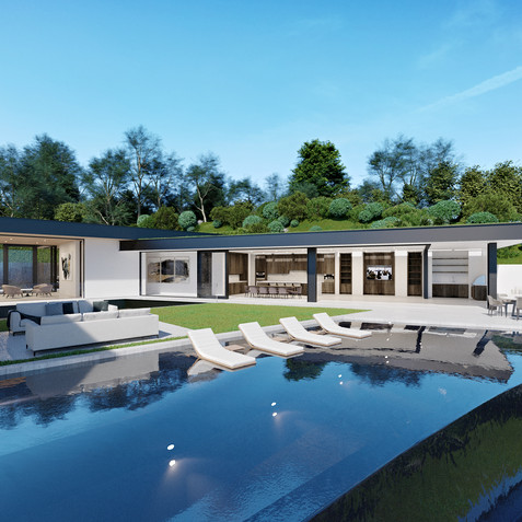 INFINITY POOL AND WATERWALL HOUSE VISUALIZATION
