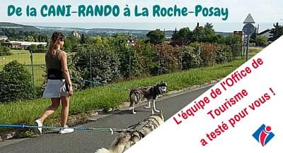 NOUVEAU : la CANI-RANDO, se balader autrement !