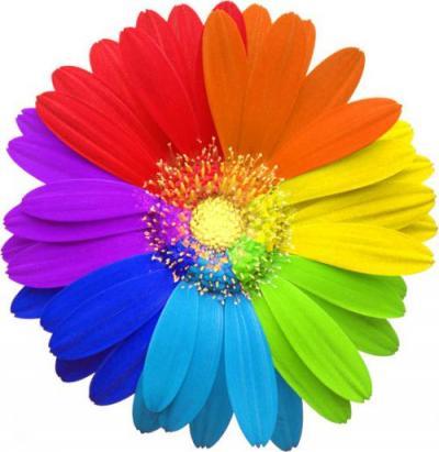 цвет в интерьере (50)