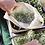 Thumbnail: Biopamut hálós ökozsák M méret | 3db