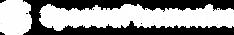 Spectra Plasmonics logo white.png