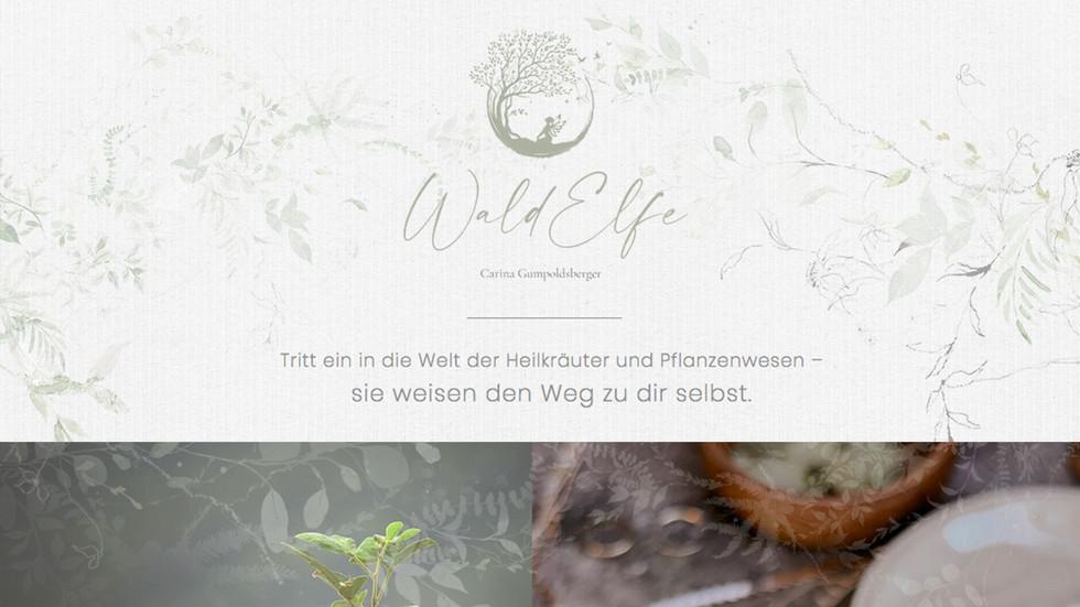 Start - Waldelfe.jpg