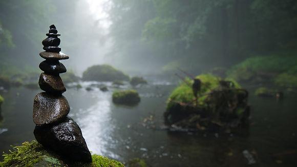 fog-foggy-forest-158607.jpg