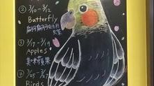 【繪本屋3-8歲故事三月主題&課程調整公告】