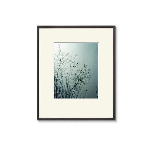 高崎 勉/写真/silhouette 04の複製