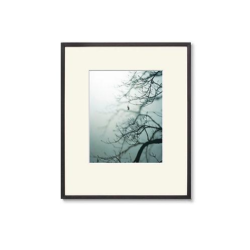 高崎 勉/写真/silhouette 01