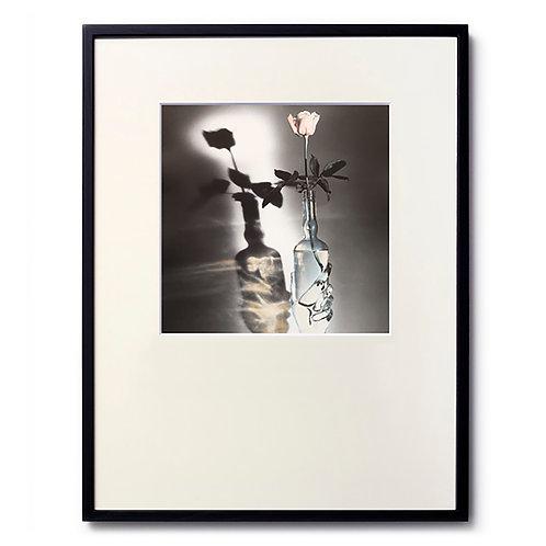 Marc LE MENE/Flower03