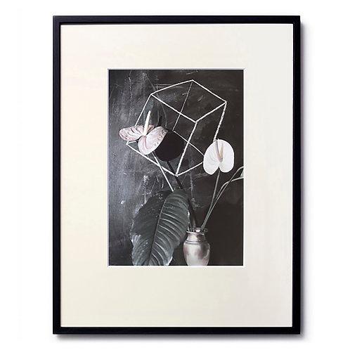 Marc LE MENE/Flower06