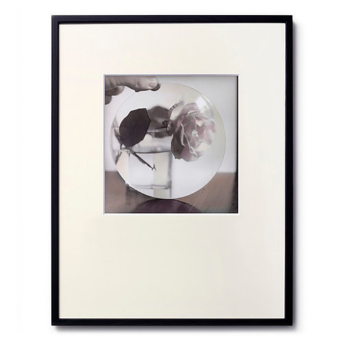 Marc LE MENE/Flower01