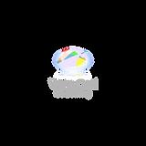 Logo for White Opal Life Coacing