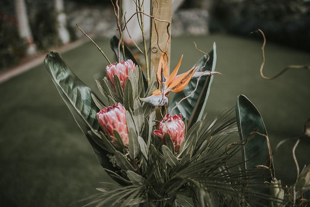 el arriate floristería