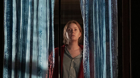 Closed Doors and Opened Windows: Woman in the Window (2021)